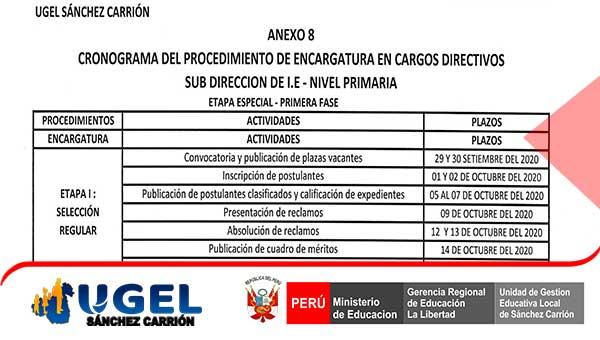 PROCEDIMIENTO DE ENCARGATURA EN CARGOS DIRECTIVOS…